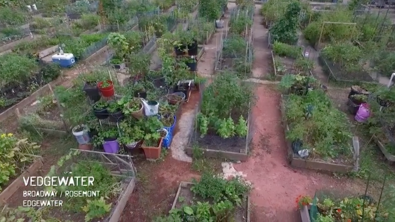Learn To Grow Your Own Food Organically With Peterson Garden Project This  Year. You Can Register To Be A Gardener At Our Areau0027s Closest Garden U2013  Vedgewater ...