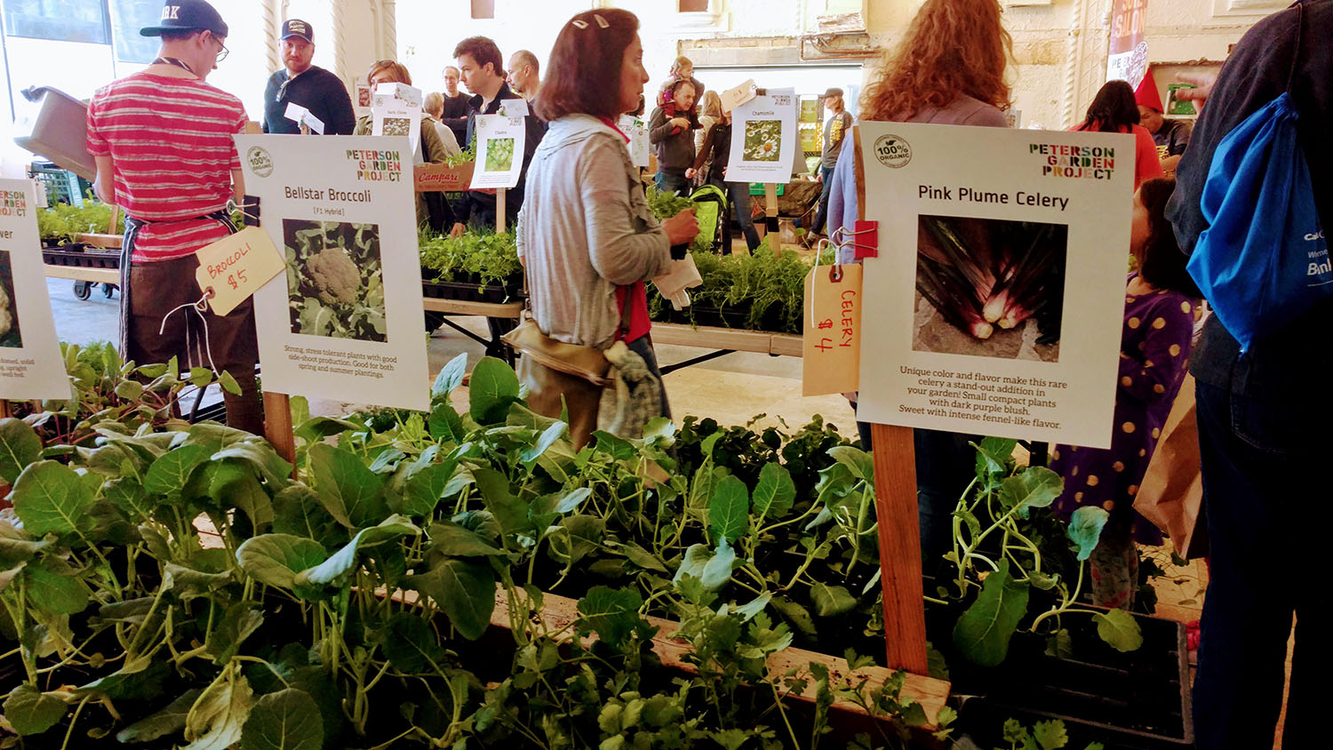 In April And May, Peterson Garden Project Is Having Their Seventh Annual  Plant Sale Fundraiser. This Year They Will Have All Organic Plants Grown By  ...
